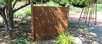 sign at entrance of Licton Springs P-Patch community garden at North Seattle College